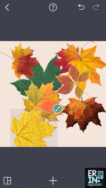 Have students make a leaf man on Pic Collage.